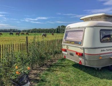 aanzicht van een caravan op camping Petit013 in Tilburg met op de achtergrond een weiland met paarden