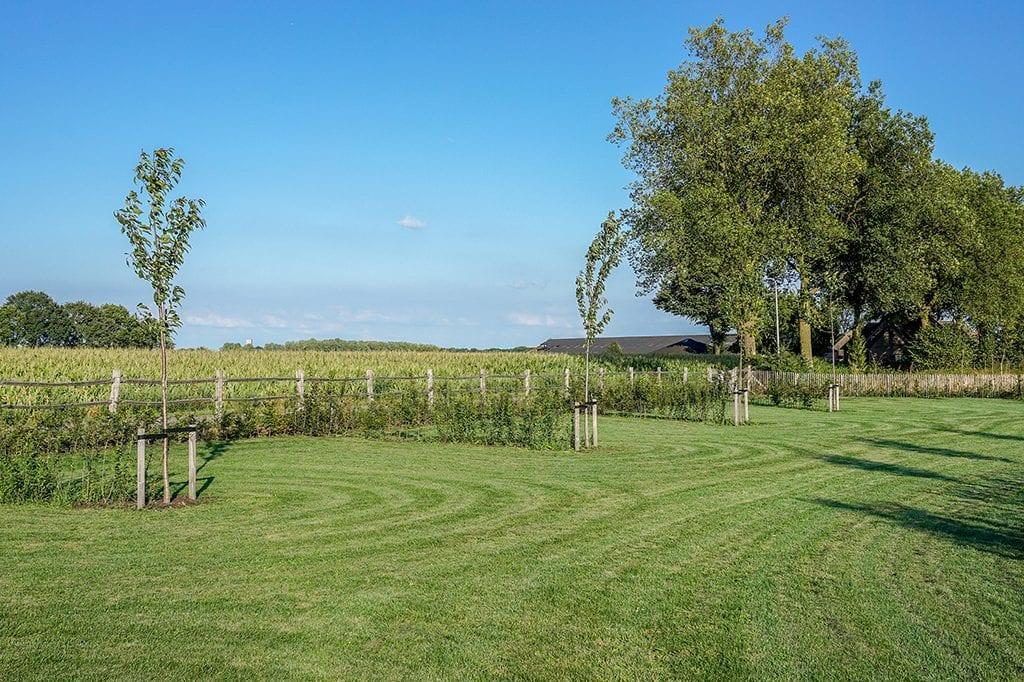 Strak gemaaid gras van enkele kampeerplaatsen van camping Petit013 in Tilburg